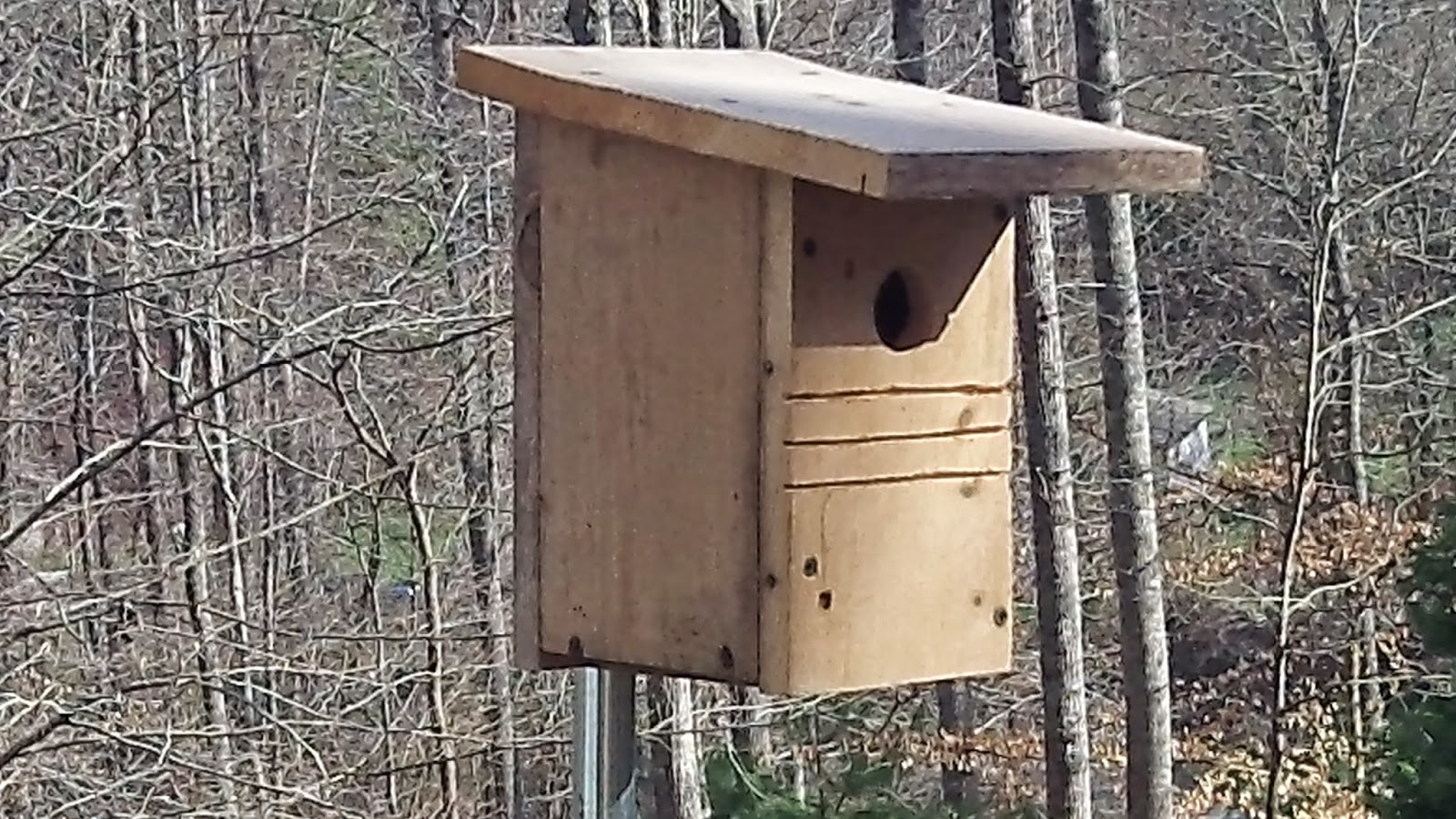 Bluebird Nesting Box made from recovered lumber