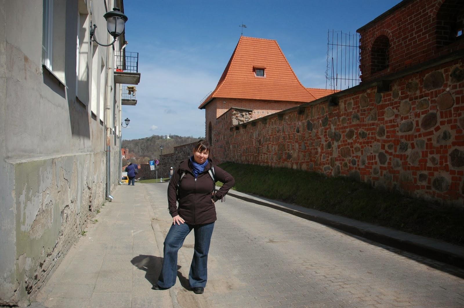Wzgórze Barbakan w Wilnie