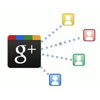 Google+ Shares icon