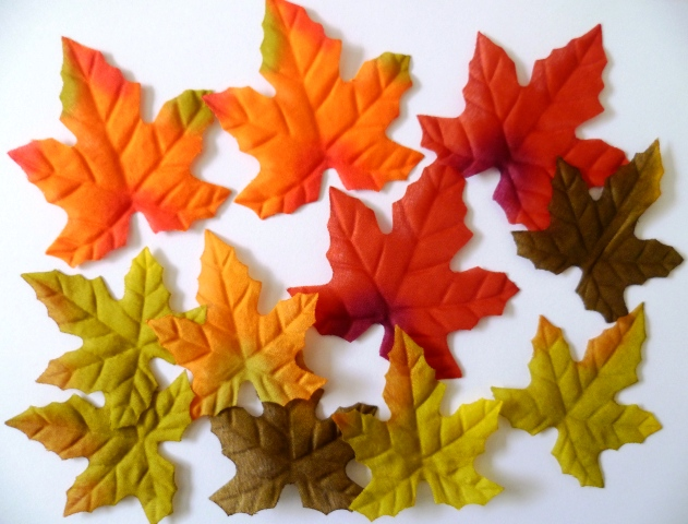 Silk Autumn Leaves7