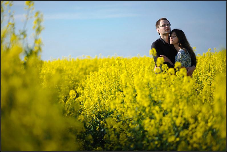 romantiškos nuotraukos rapsų laukuose ankstyvą rytą