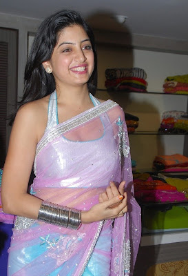 Poonam Kaur Hot Boob Show in Transparent Saree