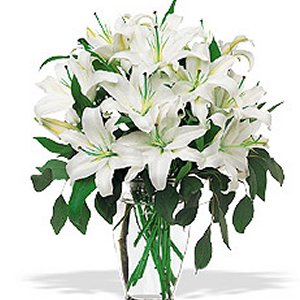 Order White Lilies in a Vase