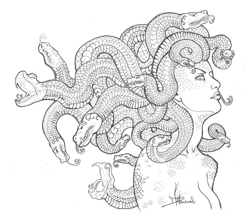 Medusa Head Drawing Easy Images amp Pictures Becuo