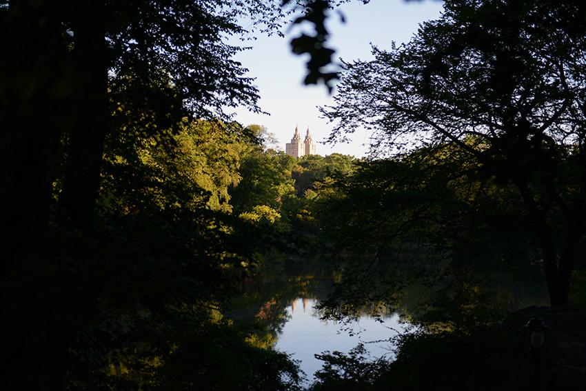 the petticoat photo diary new york friend of mine zara sirographics  central park