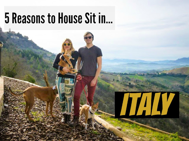 Five Reasons to Housesit in Italy