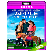 La luz de mis ojos (2017) WEB-DL 720p Audio Dual Latino-Ingles