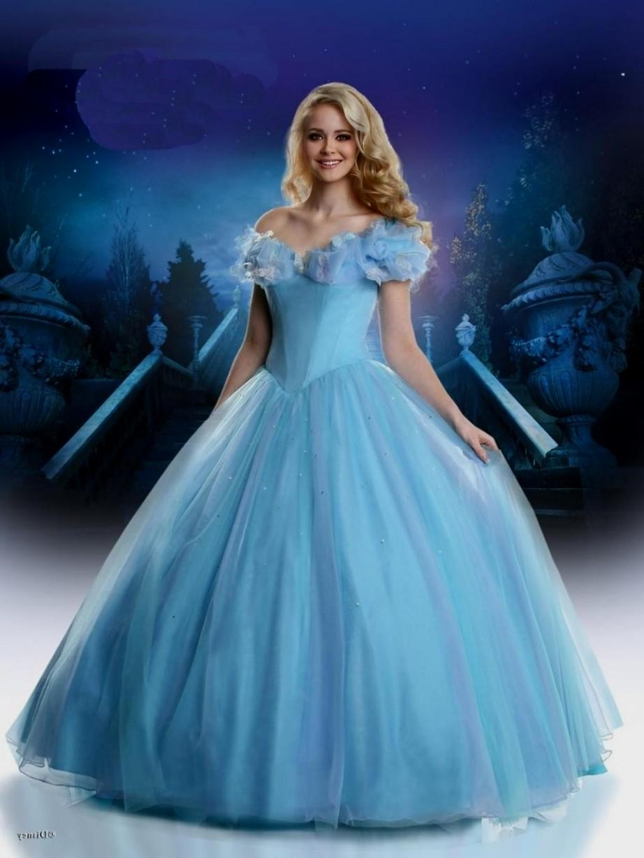 archive cinderella inspired wedding dress not only these selection of Cinderella inspired wedding gowns that can be stunning appearance ever in tulle bridal ballgown exciting deal ever