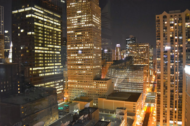 view from the wit rooftop chicago