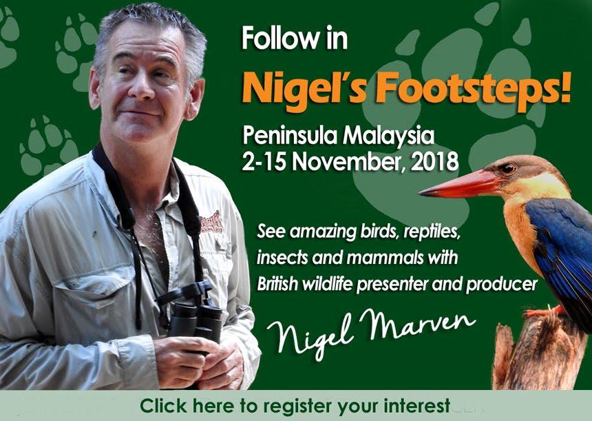 Follow in Nigel's Footsteps