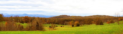 Culpeper Fall View