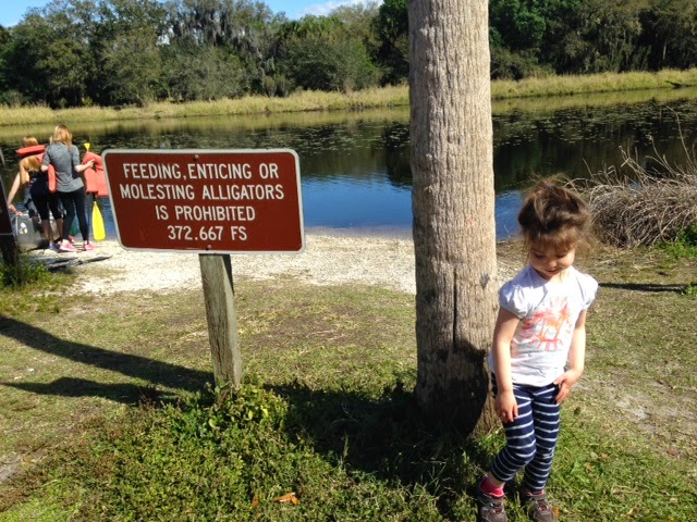 hiking in Myakka River State Park