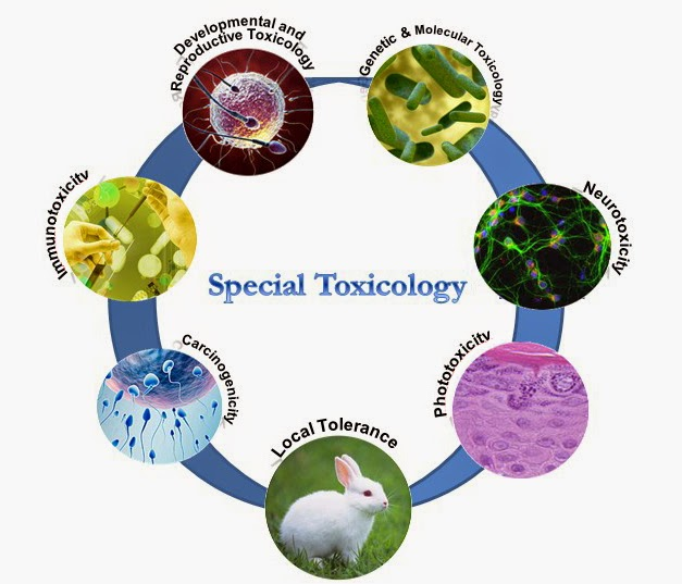 Best Toxicology Services Provider