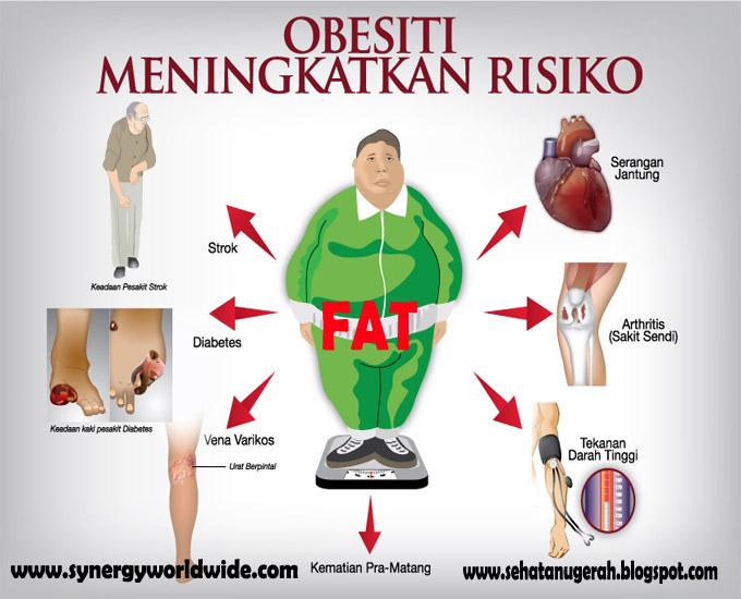 Proses penyerapan lemak dalam tubuh ternyata tidak sama
