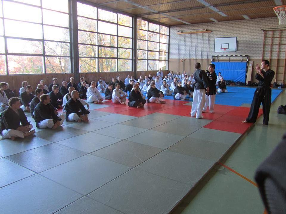 Gimnasio han kuk hapkido taekwondo video seminario de for Gimnasio telde
