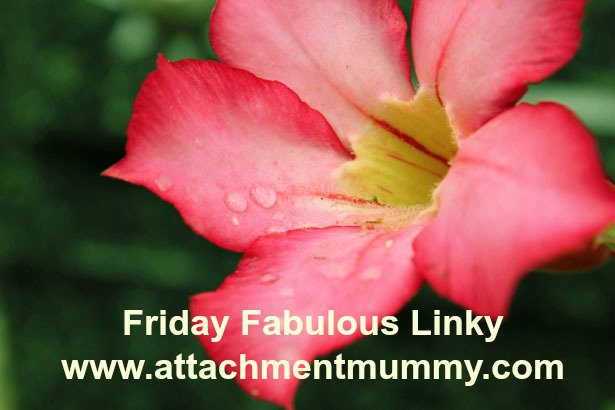 FRIDAY FABULOUS LINKY