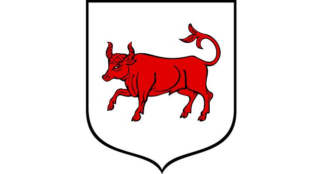 Herb miasta Turek