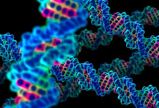 Conceitos básicos da Genética Humana e Médica