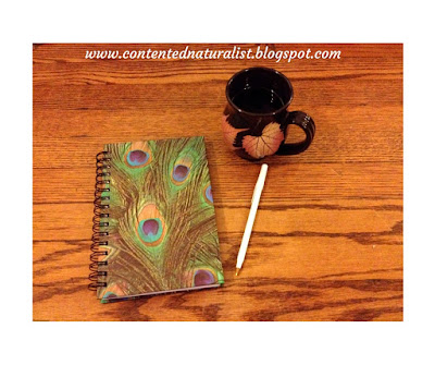 photo of a notebook, a pen, and a cup of coffee