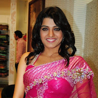 ethnic and rosy tashu kaushik in saree hot spicy stills
