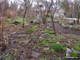 Trädgårdslund, Woodland