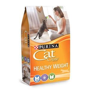 Amostra Gratis Ração Cat Chow para gatos