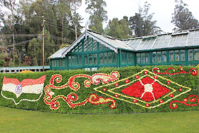 Ooty Flower Show 2011 Photos