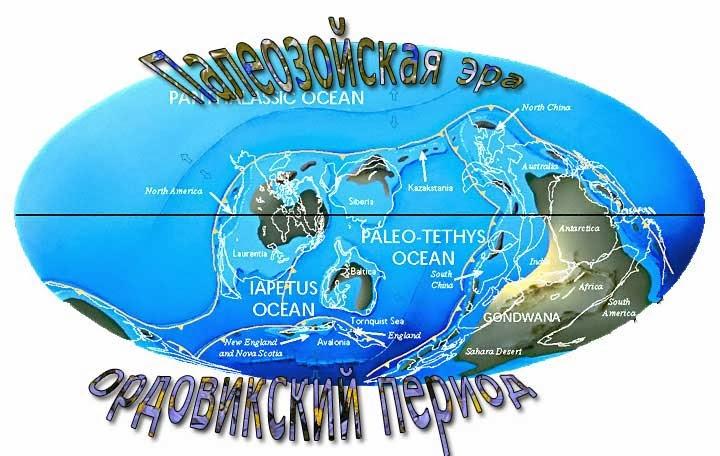 ордовикский период палеозойской эры
