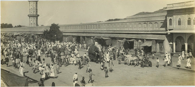 Procession & Elephants In Jaipur