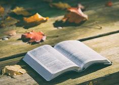 Een open Bijbel