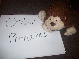  Order Primates