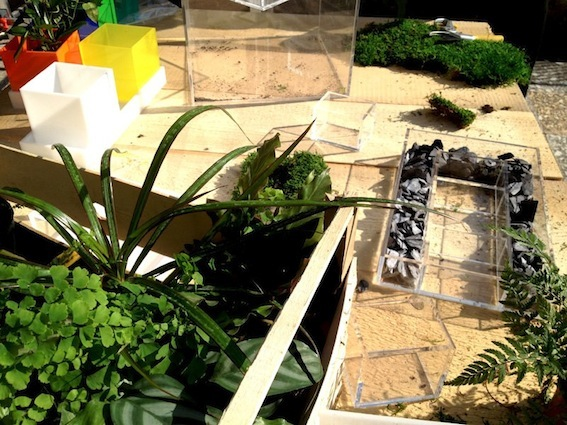 contenitore in plexi per giardino niwabox vendita online