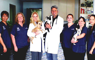 Image of: Parker Co Chicago Tribune Vca Animal Hospitals Vca Veterinary Clinic