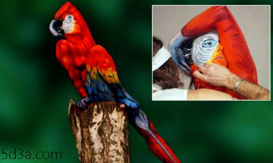 body-paint-a-parrot-optical-illusions