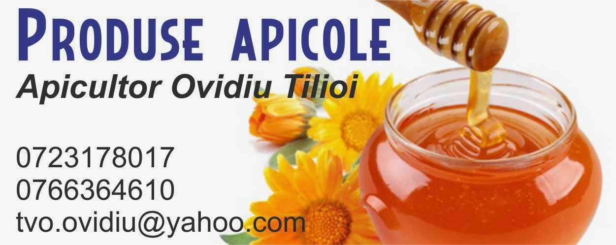 Miere şi alte produse apicole