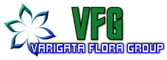 VARIGATA FLORA GROUP