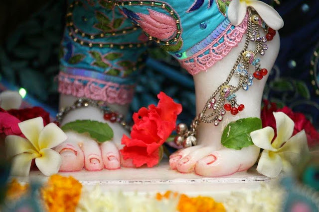 Lotus Feet of Sri Radha Vrindavan Chandra