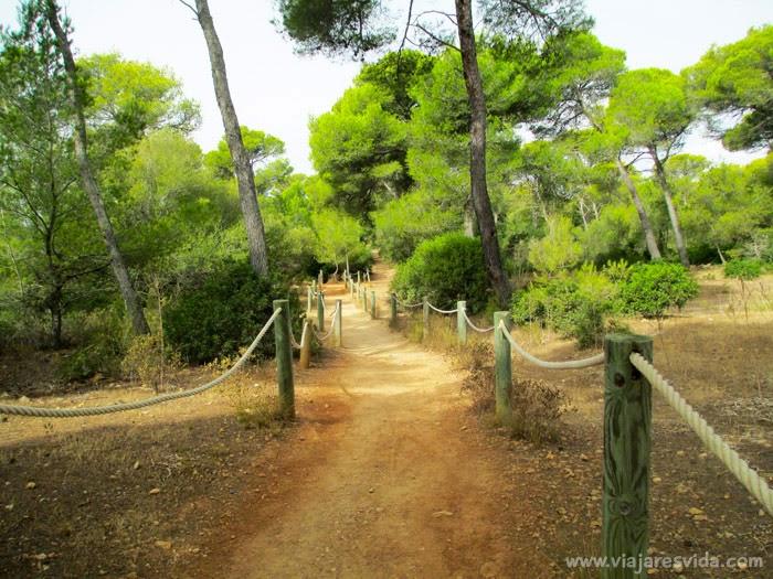 Camino hacia Cala Macarella y Macarelleta