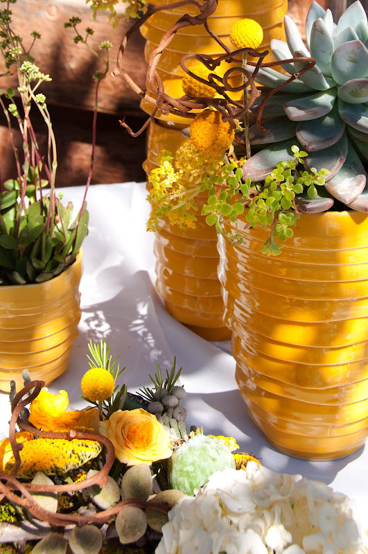 gold ceramic vessels potted with succulents for the buffet this great