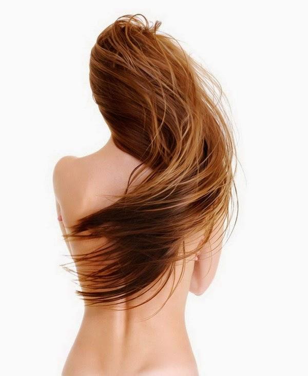 Định nghĩa vui về phe tóc dài