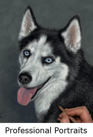 Commission a  custom portrait of your pet!