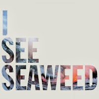 The Top 50 Albums of 2013: 03. The Drones - I See Seaweed