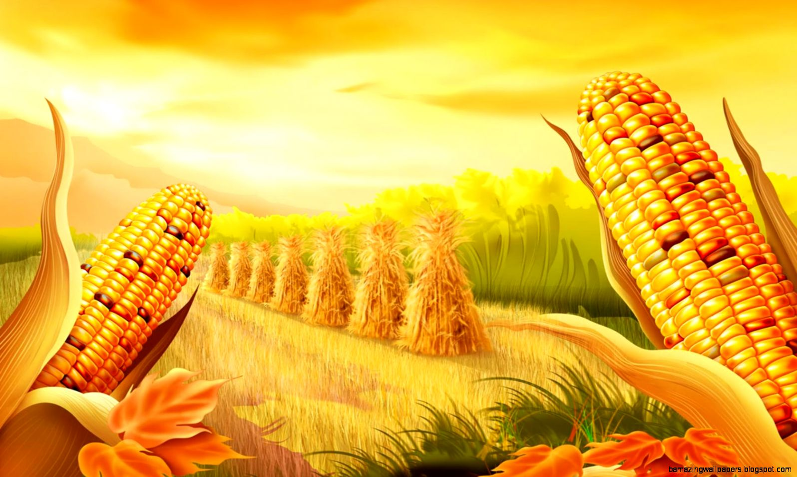 Corn Harvest widescreen wallpaper
