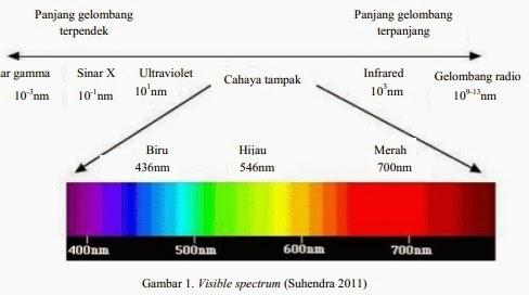 Sesuatu yang masih baru tentang warna pada umumnya dibagi dalam delapan interval berdasarkan karakteristik warnanya purwantana 2005 pembagian spektrum warna dapat dilihat pada gambar 1 ccuart Images