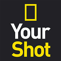 Your Shot Profile