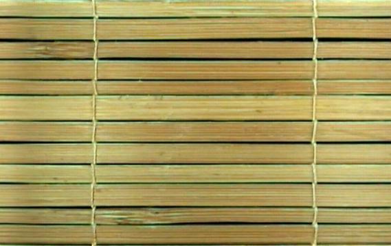 Bamboo Mat6