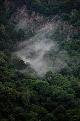 Туман в горах после дождя