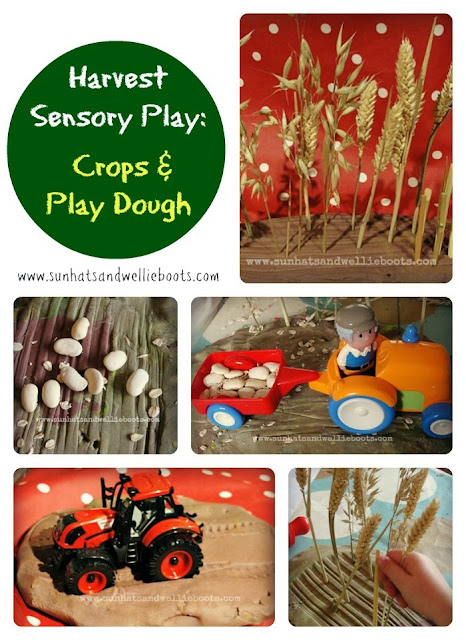 http://www.sunhatsandwellieboots.com/2011/09/harvest-sensory-play-crops-play-dough.html
