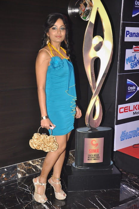 madhavi latha sizzling at siima awards party hot photoshoot
