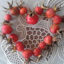 Šípky ze zahrady